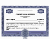 Electronic Digital Single Class Precise Stock Certificates